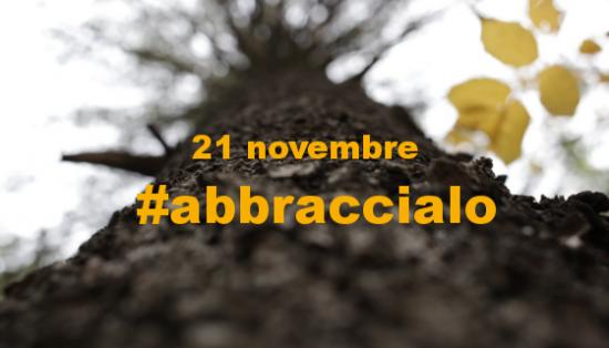 La Festa dell'Albero con le iniziative in Italia